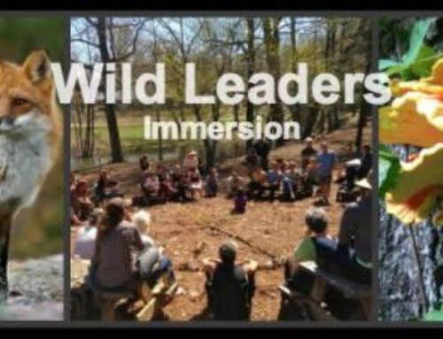 Wild Leaders Adult Immersion: A Radical Expression of Hope